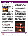 0000062441 Word Template - Page 3