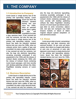 0000062447 Word Template - Page 3
