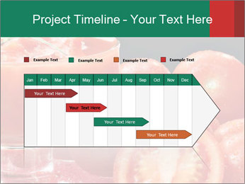0000062448 PowerPoint Template - Slide 25