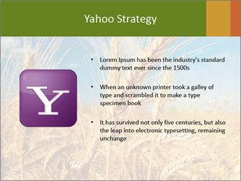 0000062459 PowerPoint Template - Slide 11