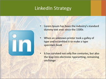 0000062459 PowerPoint Template - Slide 12