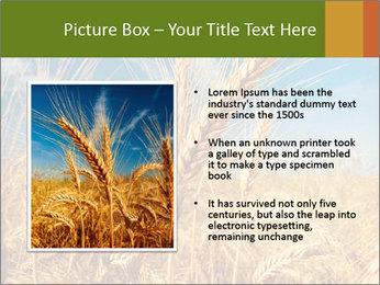0000062459 PowerPoint Template - Slide 13