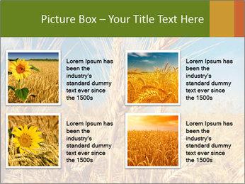 0000062459 PowerPoint Template - Slide 14