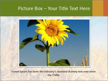 0000062459 PowerPoint Template - Slide 15