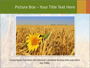 0000062459 PowerPoint Template - Slide 16