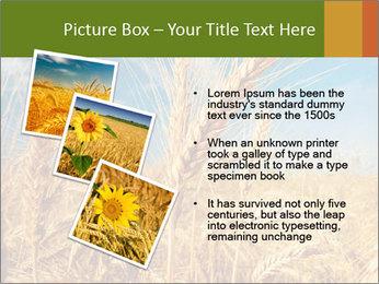 0000062459 PowerPoint Template - Slide 17