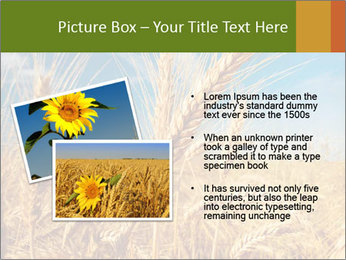 0000062459 PowerPoint Template - Slide 20
