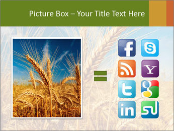 0000062459 PowerPoint Template - Slide 21