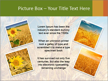 0000062459 PowerPoint Template - Slide 24