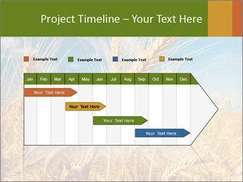 0000062459 PowerPoint Template - Slide 25