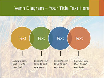 0000062459 PowerPoint Template - Slide 32