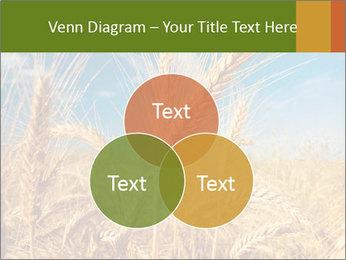 0000062459 PowerPoint Template - Slide 33