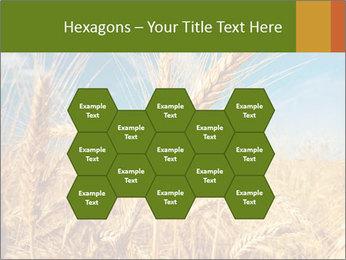 0000062459 PowerPoint Template - Slide 44