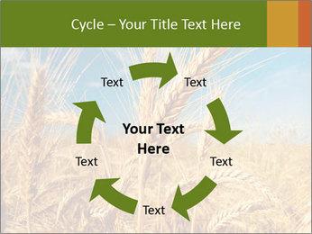 0000062459 PowerPoint Template - Slide 62