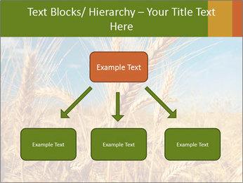 0000062459 PowerPoint Template - Slide 69