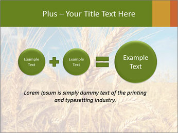 0000062459 PowerPoint Template - Slide 75