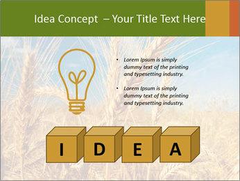 0000062459 PowerPoint Template - Slide 80