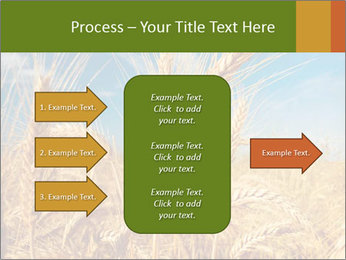 0000062459 PowerPoint Template - Slide 85