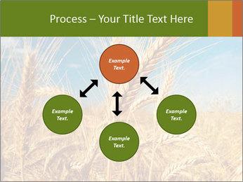 0000062459 PowerPoint Template - Slide 91