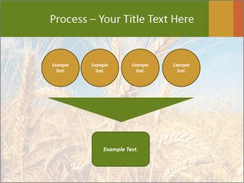 0000062459 PowerPoint Template - Slide 93