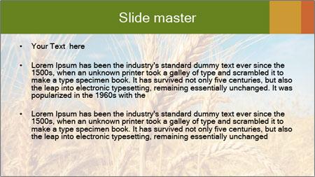 0000062459 PowerPoint Template - Slide 2