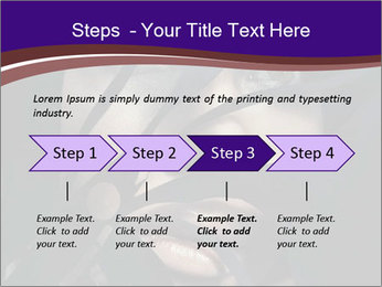 0000062460 PowerPoint Templates - Slide 4