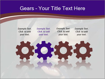 0000062460 PowerPoint Templates - Slide 48