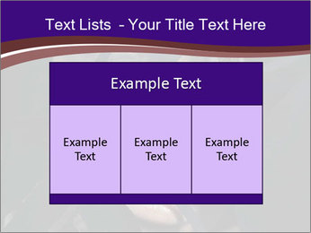 0000062460 PowerPoint Templates - Slide 59
