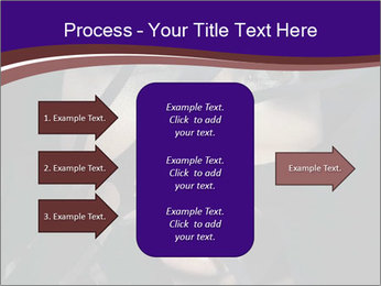0000062460 PowerPoint Templates - Slide 85