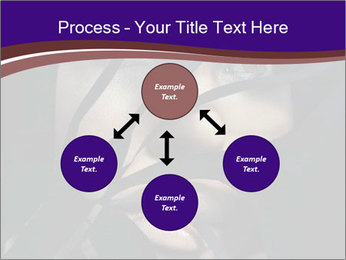 0000062460 PowerPoint Templates - Slide 91