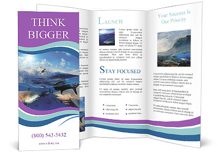 0000062461 Brochure Template