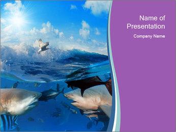 0000062461 PowerPoint Template - Slide 1
