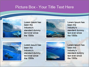 0000062461 PowerPoint Template - Slide 14