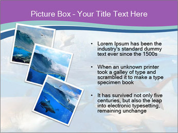 0000062461 PowerPoint Template - Slide 17