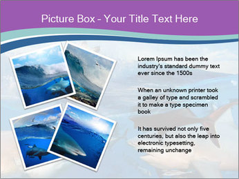0000062461 PowerPoint Template - Slide 23