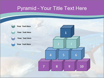 0000062461 PowerPoint Template - Slide 31