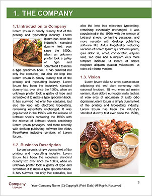 0000062469 Word Template - Page 3