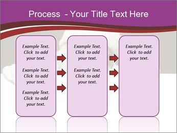 0000062475 PowerPoint Template - Slide 86
