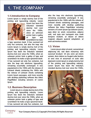 0000062480 Word Template - Page 3