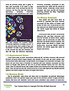 0000062485 Word Templates - Page 4