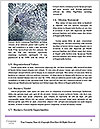 0000062492 Word Templates - Page 4
