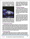 0000062494 Word Templates - Page 4