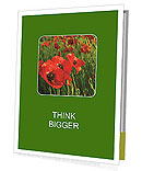 0000062498 Presentation Folder