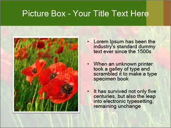0000062498 PowerPoint Template - Slide 13