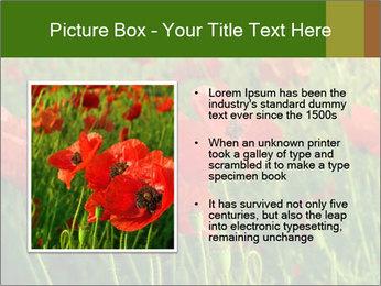 0000062498 PowerPoint Templates - Slide 13
