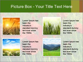 0000062498 PowerPoint Templates - Slide 14