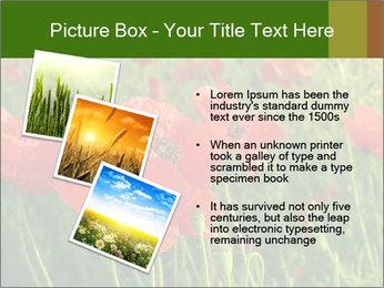 0000062498 PowerPoint Templates - Slide 17