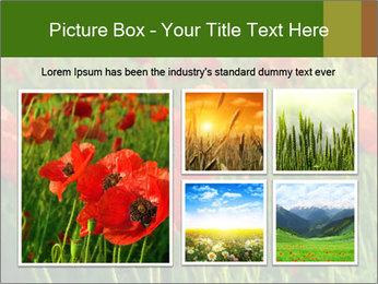 0000062498 PowerPoint Templates - Slide 19