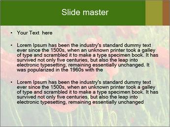 0000062498 PowerPoint Templates - Slide 2