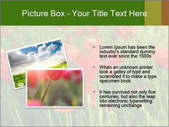 0000062498 PowerPoint Template - Slide 20